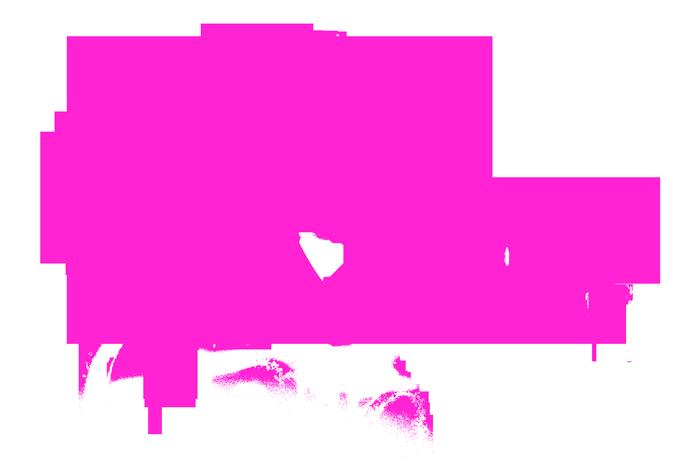 log_pink2